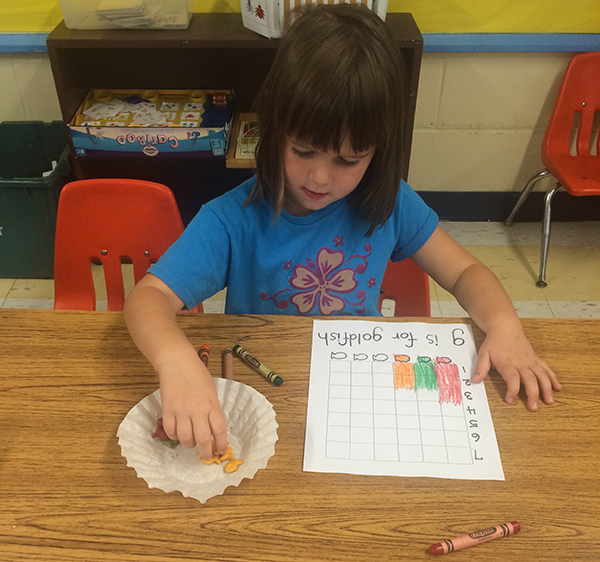 Organizing & Interpreting Data in Kindergarten
